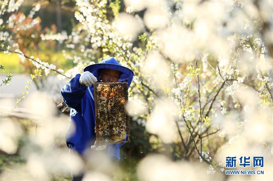 #(經濟)(1)春來農事忙