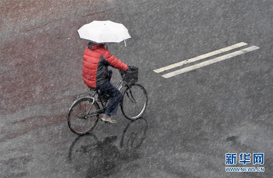 (環境)(10)北京迎來春雪