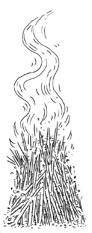 """飞艇开奖结果网址:华北农事活动进入活跃期_秸秆焚烧如何从""""不敢""""变""""不想"""""""