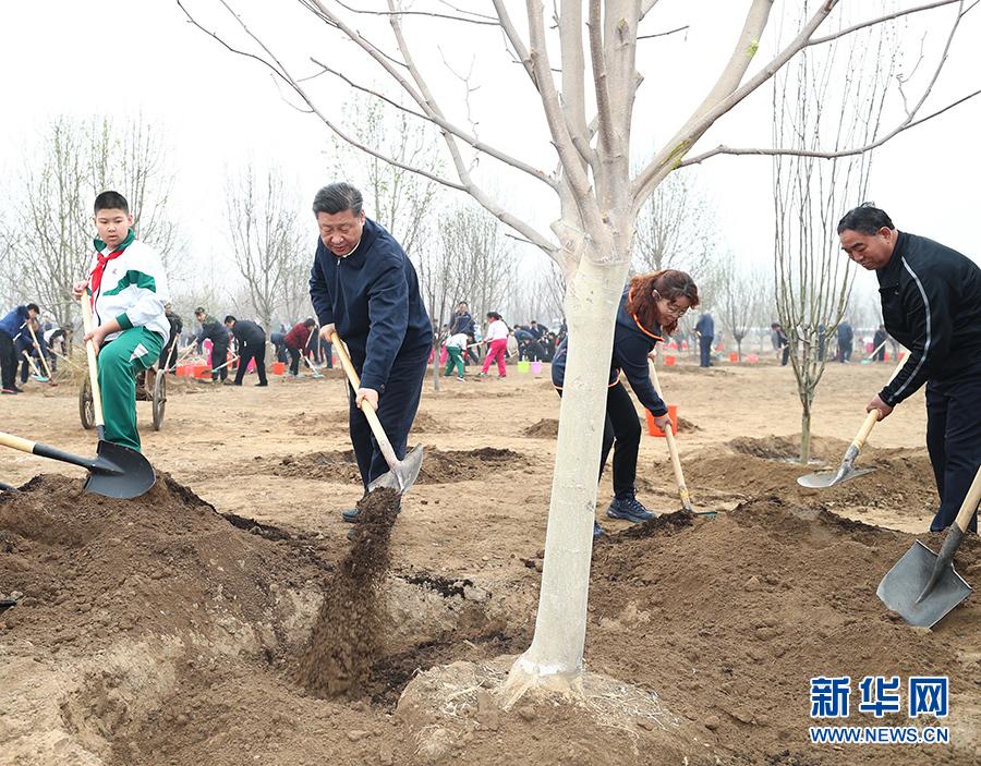 习近平在参加首都义务植树活动