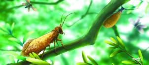 三国科学家成功还原2亿年前飞蛾的真实色彩