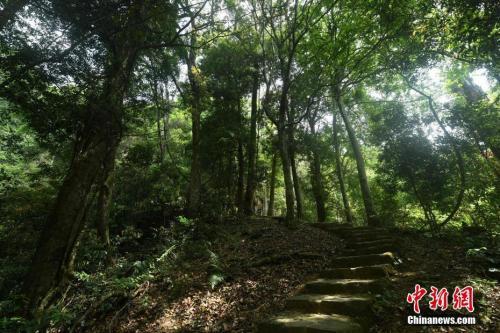 中国自然保护地达10000余处 占地域面积18%刺神传说