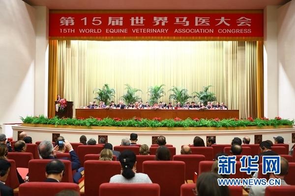 第15届世界马医大会在京举行上海美联臣怎么样