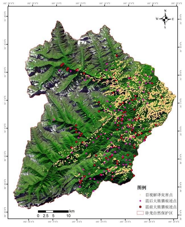 中科院:汶川地质灾害活跃度降低 堰塞湖风险基本消除梧桐那么伤下载