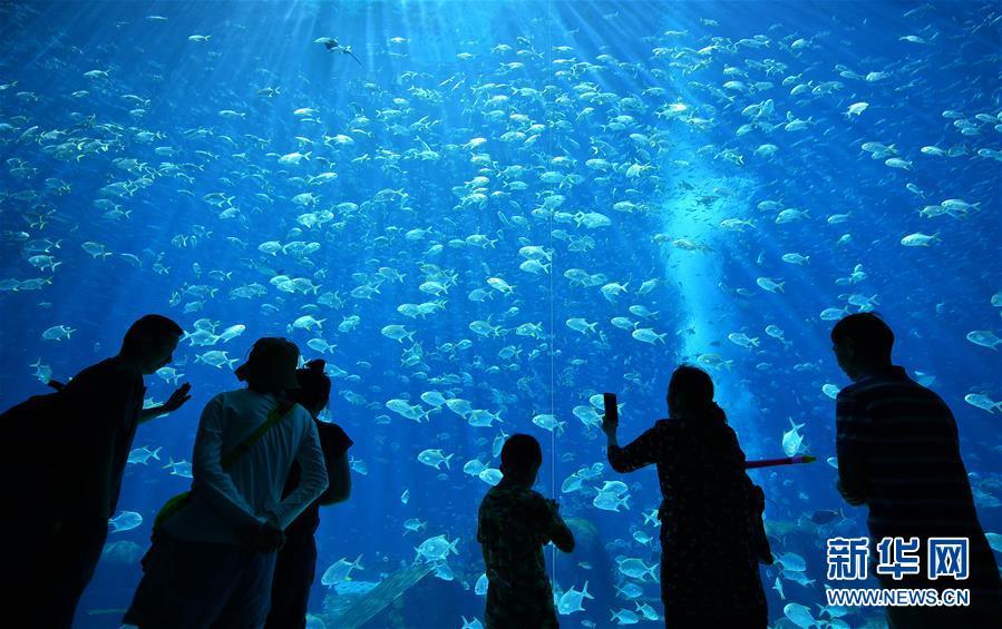 (XHDW)(8)海南打造國際旅遊消費中心