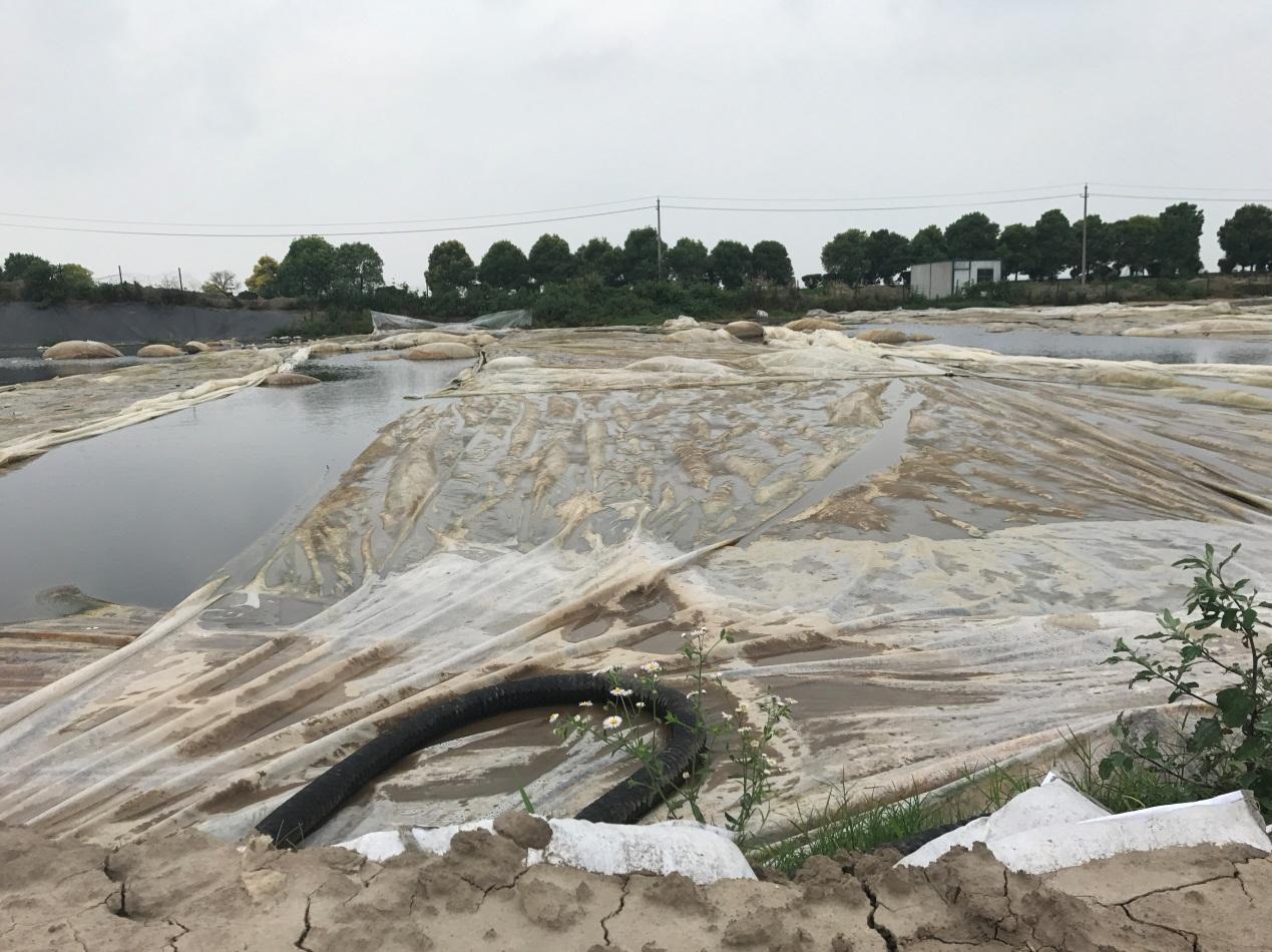 泰兴市长江边倾倒数万吨污泥两年未整改还变本加厉