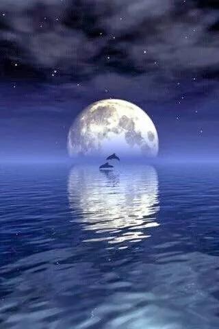 水光粼粼,这画面真美-月下