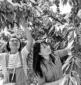 急速赛车彩票官网开奖:多地农产品滞销新闻引发社会关注_如何破解困局