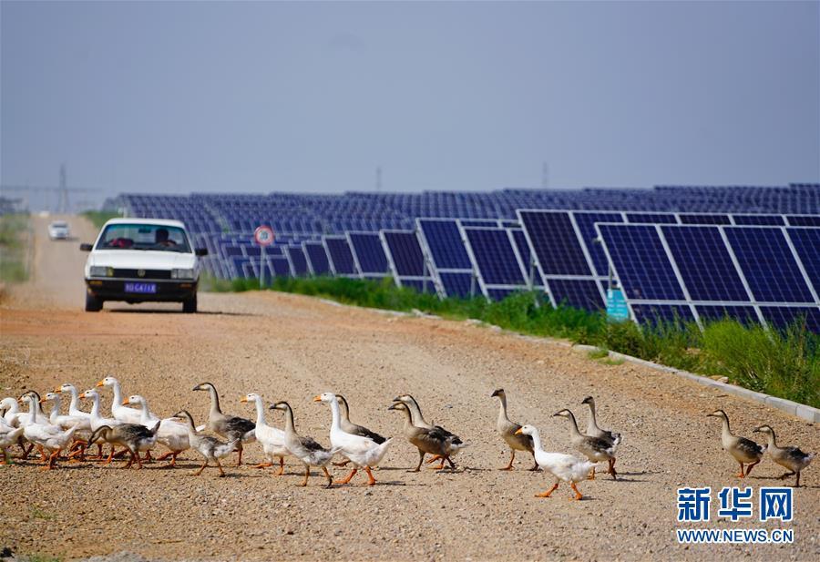 (新华全媒头条·在习近平新时代中国特色社会主义思想指引下——新时代新作为新篇章·图文互动)(7)绿富同兴画卷在沙海中铺展——库布其沙漠生态治理纪实