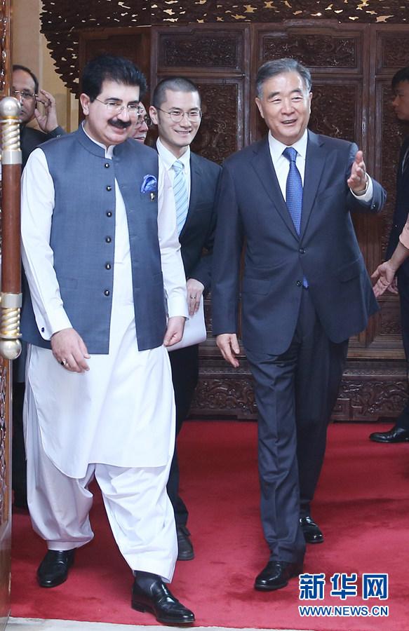 汪洋与巴基斯坦参议院主席桑吉拉尼举行会谈