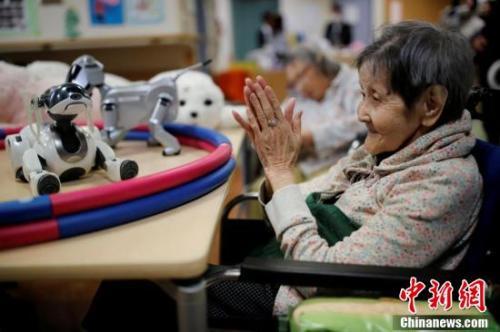 图为多种类型的机器人在养老院里分担了大部分人类的陪护工作,老人们很乐意与它们进行互动。