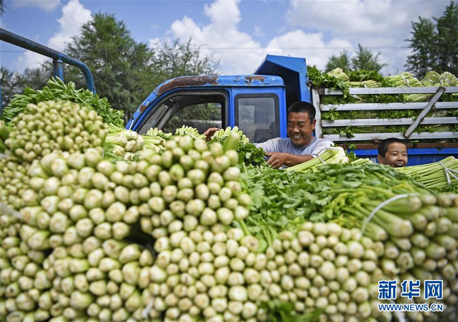 (新华全媒头条·图文互动)(7)中国扶贫的西海固答卷——宁夏奋进60年巡礼之脱贫攻坚篇