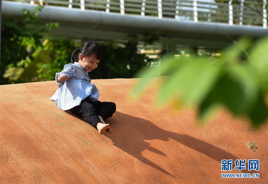 """(图文互动·百城百县百企调研行)(3)""""湿地海口""""的生态文明建设实践"""