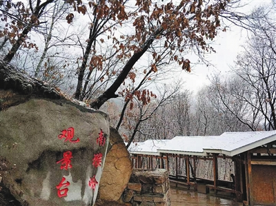 北京本周夜间气温低至冰点 初冬模样初现