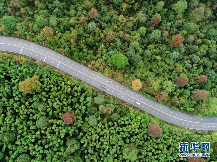 (新華全媒頭條)(1)向著新的峰巔登攀——從井岡山精神看中國改革開放40年