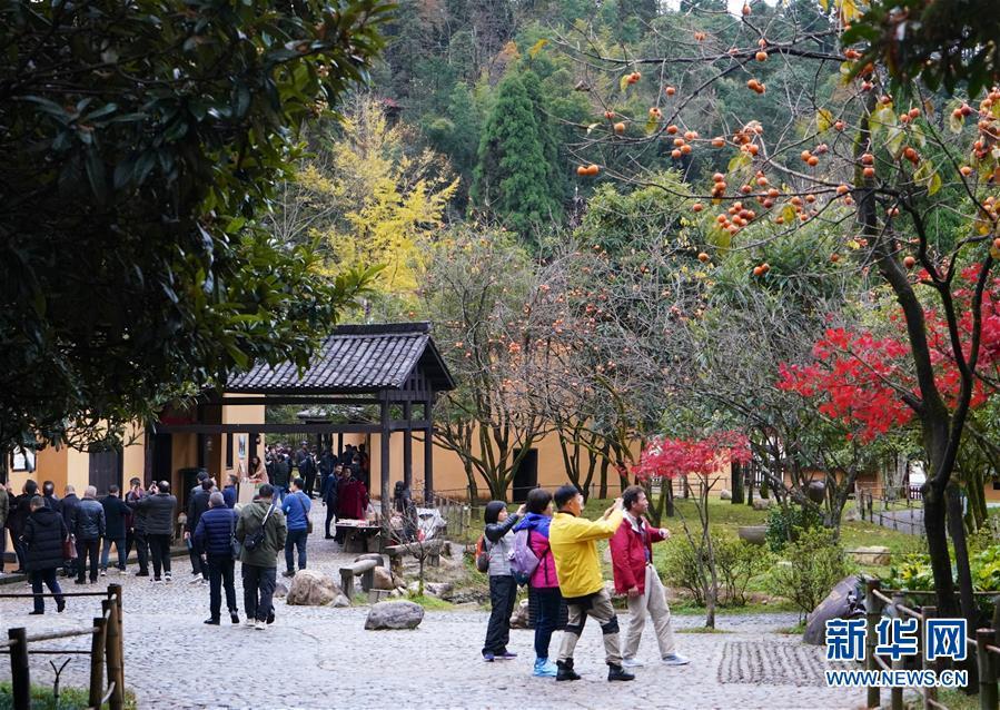 (新華全媒頭條)(2)向著新的峰巔登攀——從井岡山精神看中國改革開放40年
