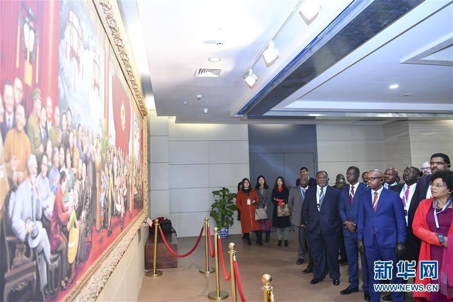 (XHDW)非洲国家驻华使节走进全国政协