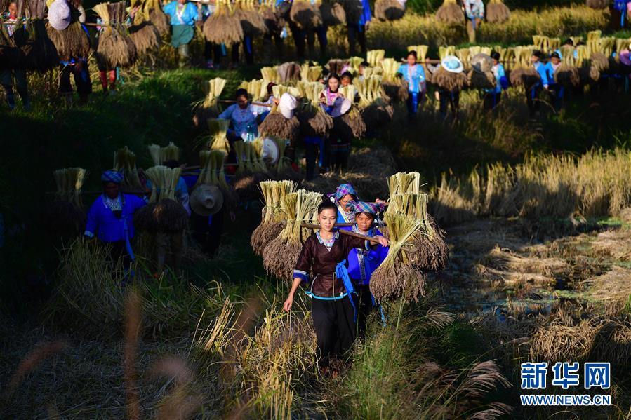 (辉煌60年·壮美新广西·图文互动)(6)携手描绘八桂大地上的美丽画卷——写在广西壮族自治区成立60周年之际