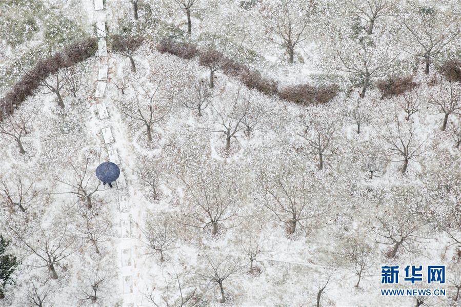 #(環境)(1)瑞雪迎新年