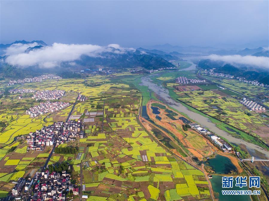 """(图文互动)(1)建设好生态宜居的美丽乡村――从""""千万工程""""看习近平生态文明思想的生动实践和世界回响"""