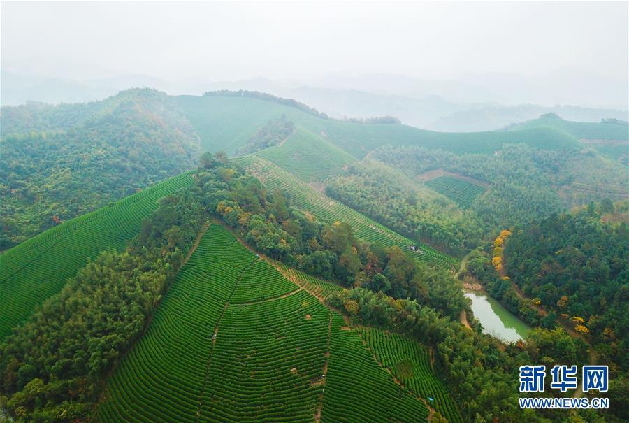 """(图文互动)(5)建设好生态宜居的美丽乡村――从""""千万工程""""看习近平生态文明思想的生动实践和世界回响"""