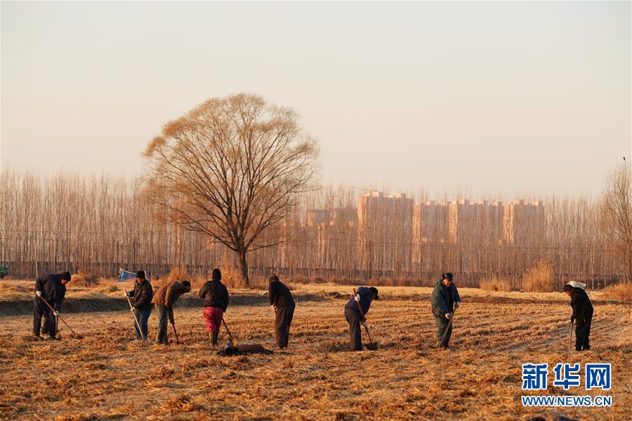 (图文互动)(7)国务院批复同意《河北雄安新区总体规划(2018—2035年)》