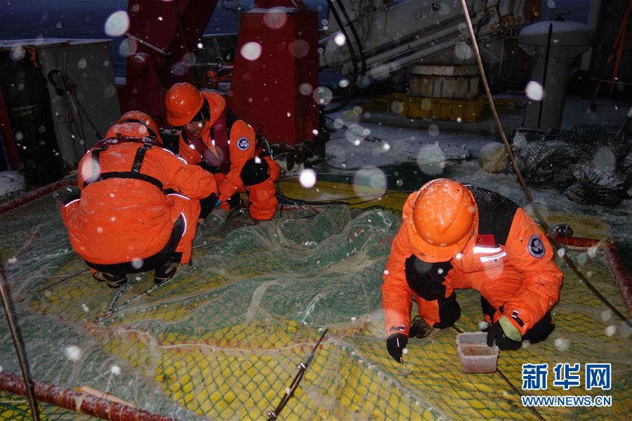 """(图文互动)(8)""""雪龙""""号驶入我国海域 中国第35次南极科考取得多项重要成果"""