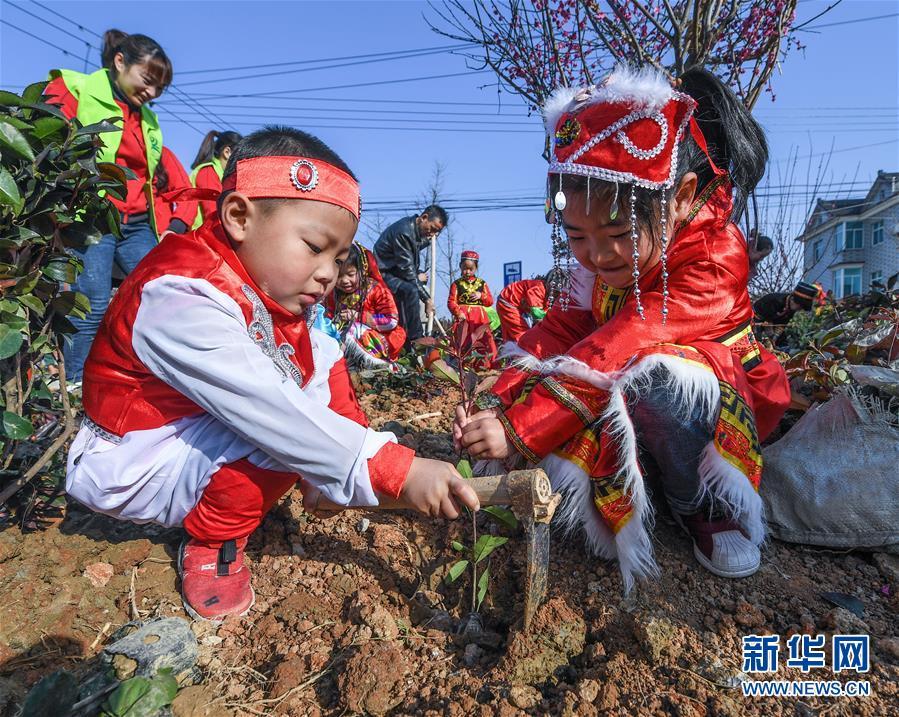 (社会)(2)多民族儿童共迎植树节