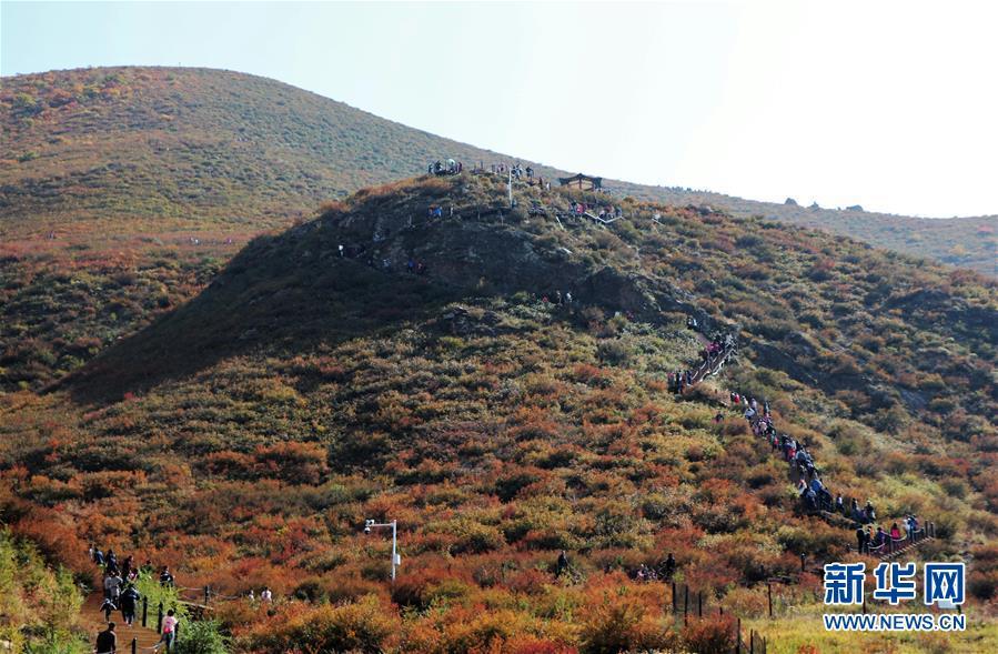 (城市绿道建设·图文互动)(2)青城登山步道:踏遍青山享美景 生态绿道助脱贫