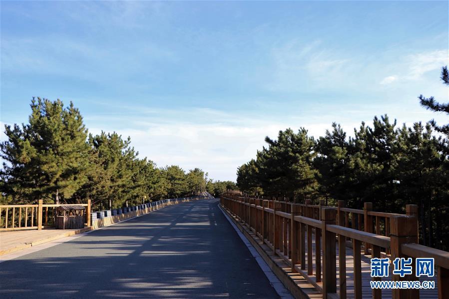 (城市绿道建设·图文互动)(4)青城登山步道:踏遍青山享美景 生态绿道助脱贫