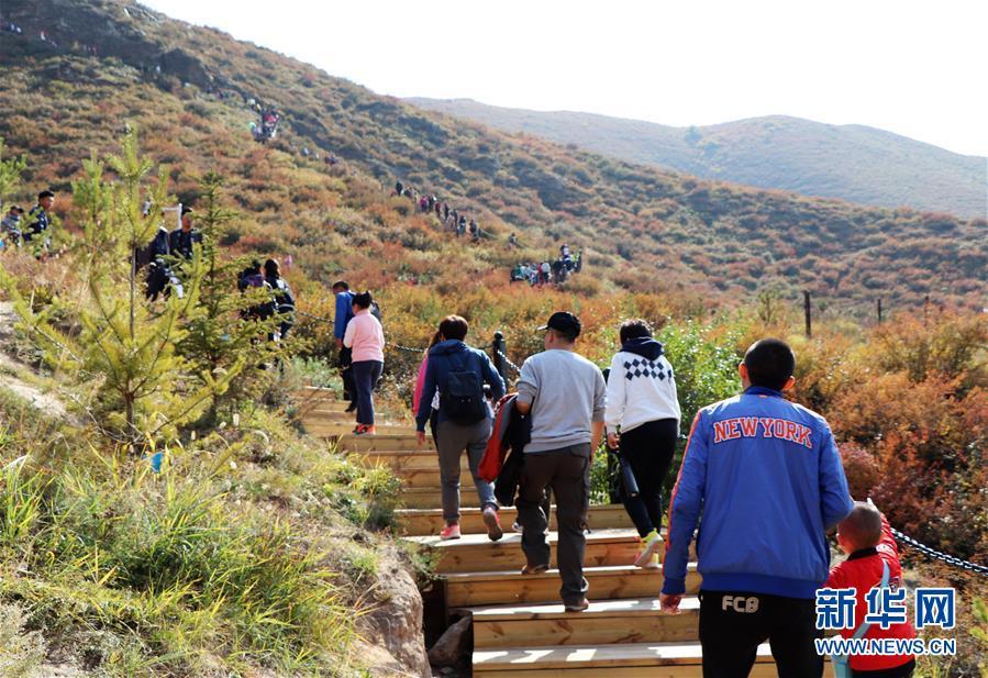 (城市绿道建设·图文互动)(5)青城登山步道:踏遍青山享美景 生态绿道助脱贫