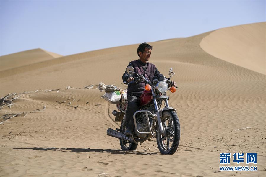 """(新华全媒头条·图文互动)(3)一步千年,""""最后的沙漠部落""""迁入新家园"""