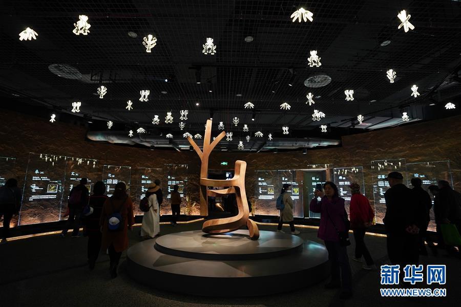 (北京世园会)(6)2019年中国北京世界园艺博览会开园