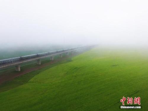 资料图:动车组穿越雨雾中的油菜花海宛若穿越时空。 杨艳敏 摄