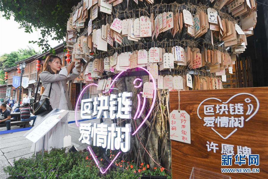 """(新华全媒头条·图文互动)(9)从""""数字中国""""看中国发展新信号、新亮点、新趋势"""