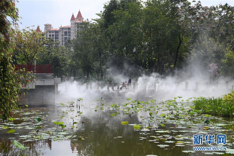 (在習近平新時代中國特色社會主義思想指引下——新時代新作為新篇章·圖文互動)(4)濕地就在城中央——珠三角重塑人與自然和諧共生圖景
