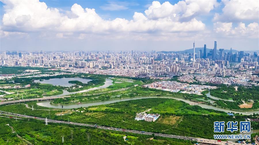 (在習近平新時代中國特色社會主義思想指引下——新時代新作為新篇章·圖文互動)(7)濕地就在城中央——珠三角重塑人與自然和諧共生圖景