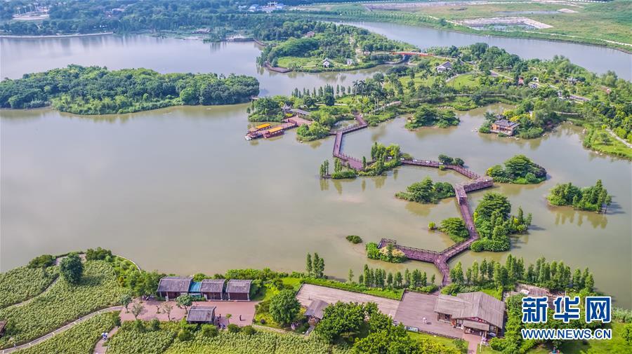 (在習近平新時代中國特色社會主義思想指引下——新時代新作為新篇章·圖文互動)(6)濕地就在城中央——珠三角重塑人與自然和諧共生圖景