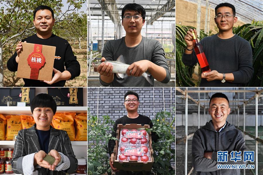 """(在习近平新时代中国特色社会主义思想指引下——新时代新作为新篇章·图文互动)(1)在绿色田野上书写青春答卷——几位""""新农民""""的返乡创业故事"""