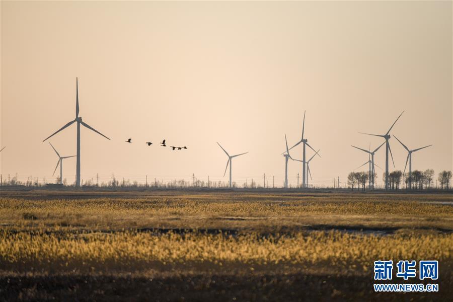 (北京世園會·圖文互動)(2)吉林分區域推進生態保護 讓綠色發展底氣更足