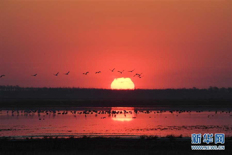 (北京世園會·圖文互動)(3)吉林分區域推進生態保護 讓綠色發展底氣更足