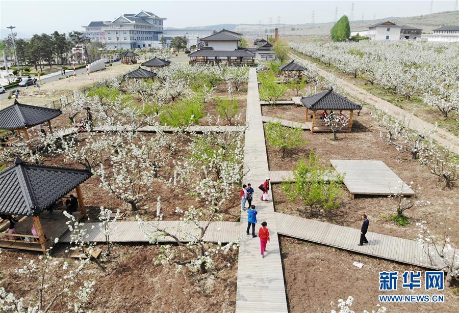 (北京世園會·圖文互動)(4)吉林分區域推進生態保護 讓綠色發展底氣更足