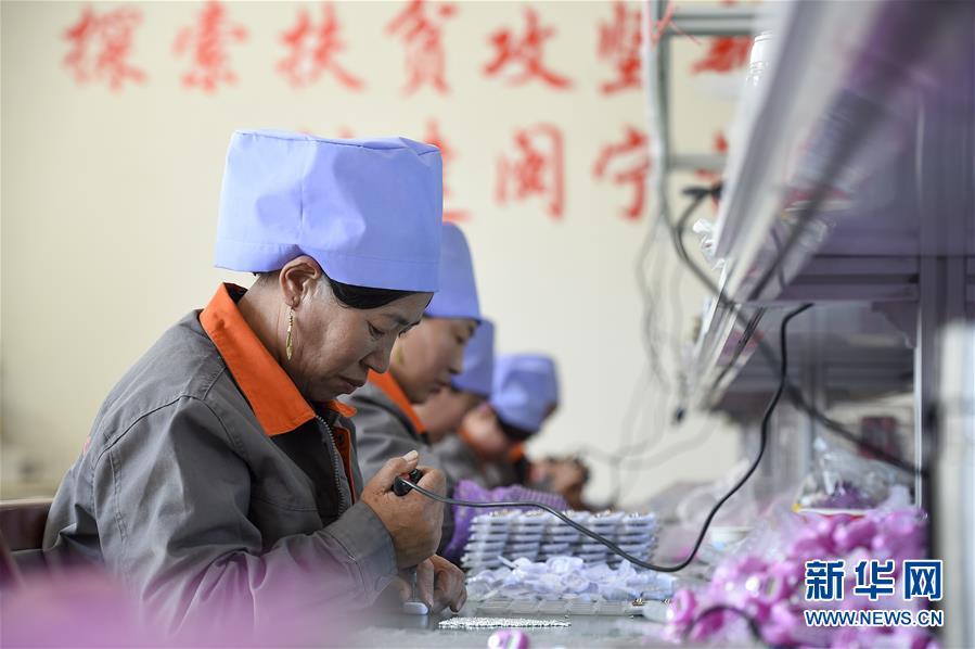 (新华全媒头条·壮丽70年·奋斗新时代·图文互动)(14)中国减贫的西海固报告