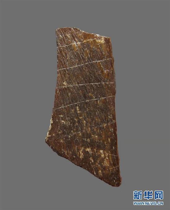 """(圖文互動)""""許昌人""""遺址發現已知最古老的人工刻劃圖案 距今約11萬年"""