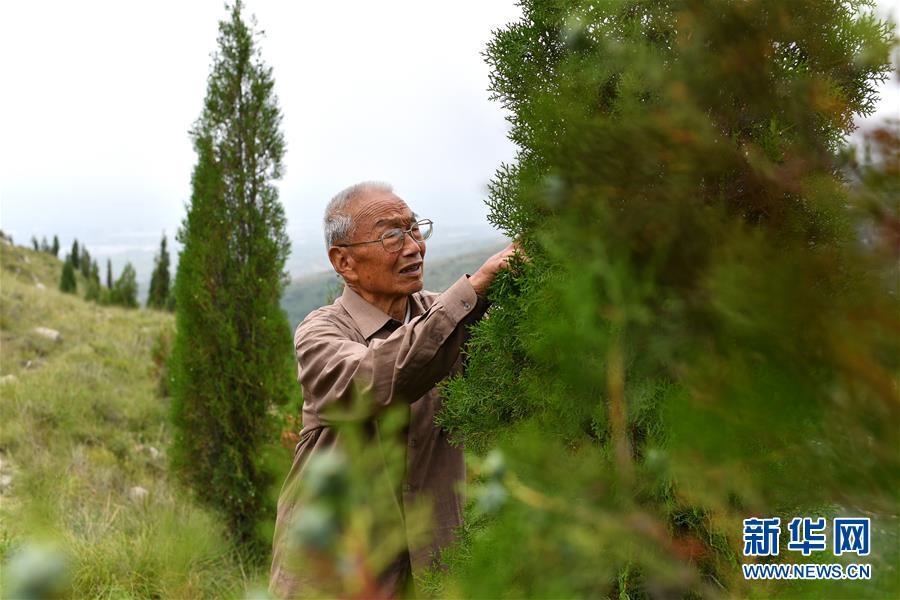 """(在习近平新时代中国特色社会主义思想指引下——新时代新作为新篇章·图文互动)(5)中条山下绿意浓——一个""""资源穷县""""的生态发展之路"""