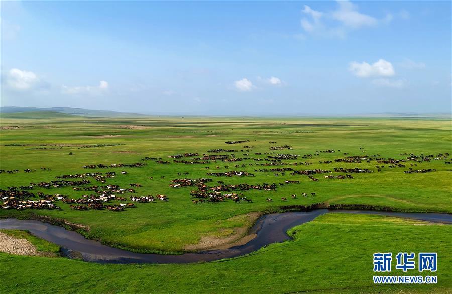 (壮丽70年·奋斗新时代——共和国发展成就巡礼·图文互动)(2)打造亮丽风景线 绘就最大同心圆——新中国70年内蒙古跨越式发展纪略