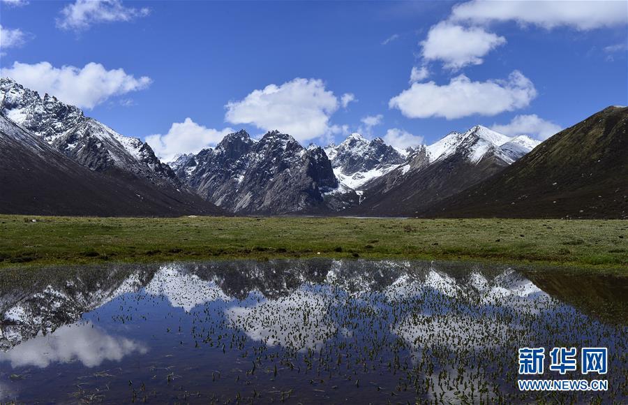 我國自然保護地體系建設取得階段性成效