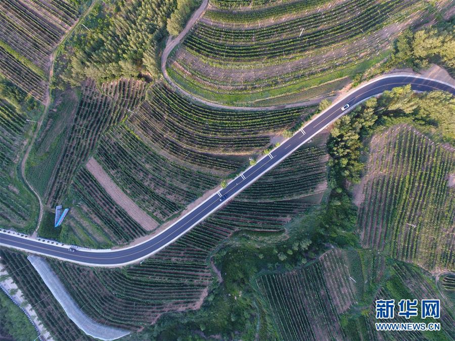 (新华全媒头条·图文互动)(9)为了美丽的绿水青山——习近平总书记考察生态文明建设回访