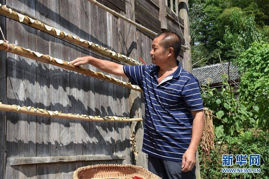 (爱国情 奋斗者·图文互动)(2)贵州印江高石坎护林队:半辈子,以林场为家