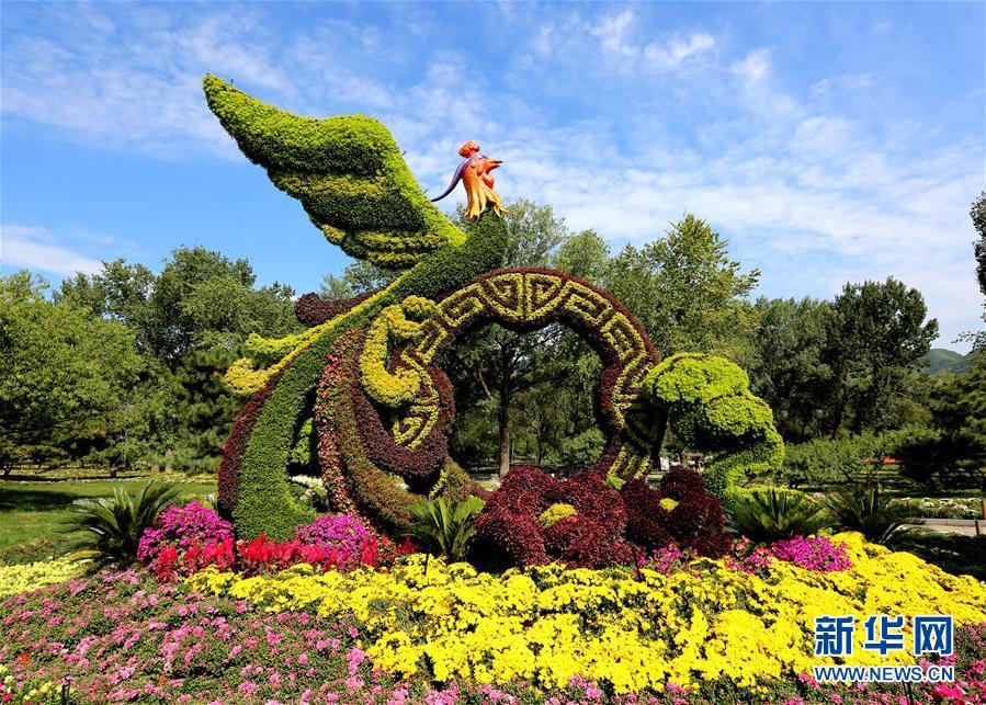 (图文互动)(3)15万平方米花卉扮靓首都公园
